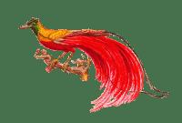 birdonbranch001png